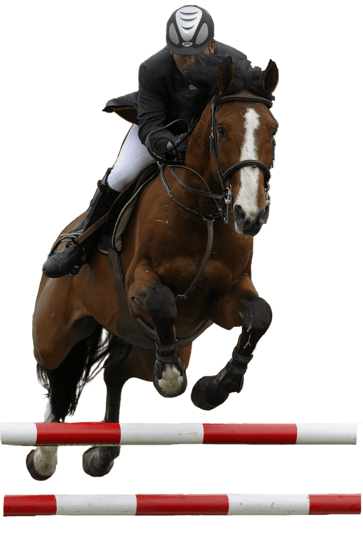 Coyote Run Equestrian Products
